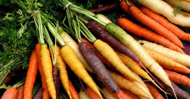 carottes_couleurs