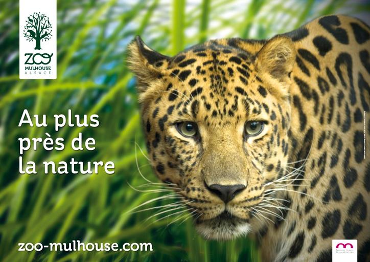 Abonnement annuel Zoo Mulhouse